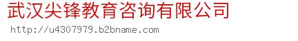 武汉尖锋教育咨询有限公司