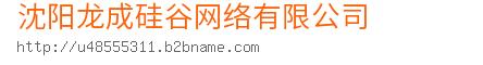 沈阳龙成硅谷网络bwin手机版登入