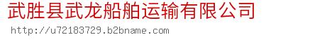 武胜县武龙船舶运输有限公司